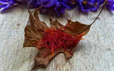 Guest Post: Six Health Benefits of Saffron, the 'Persian Red Gold'